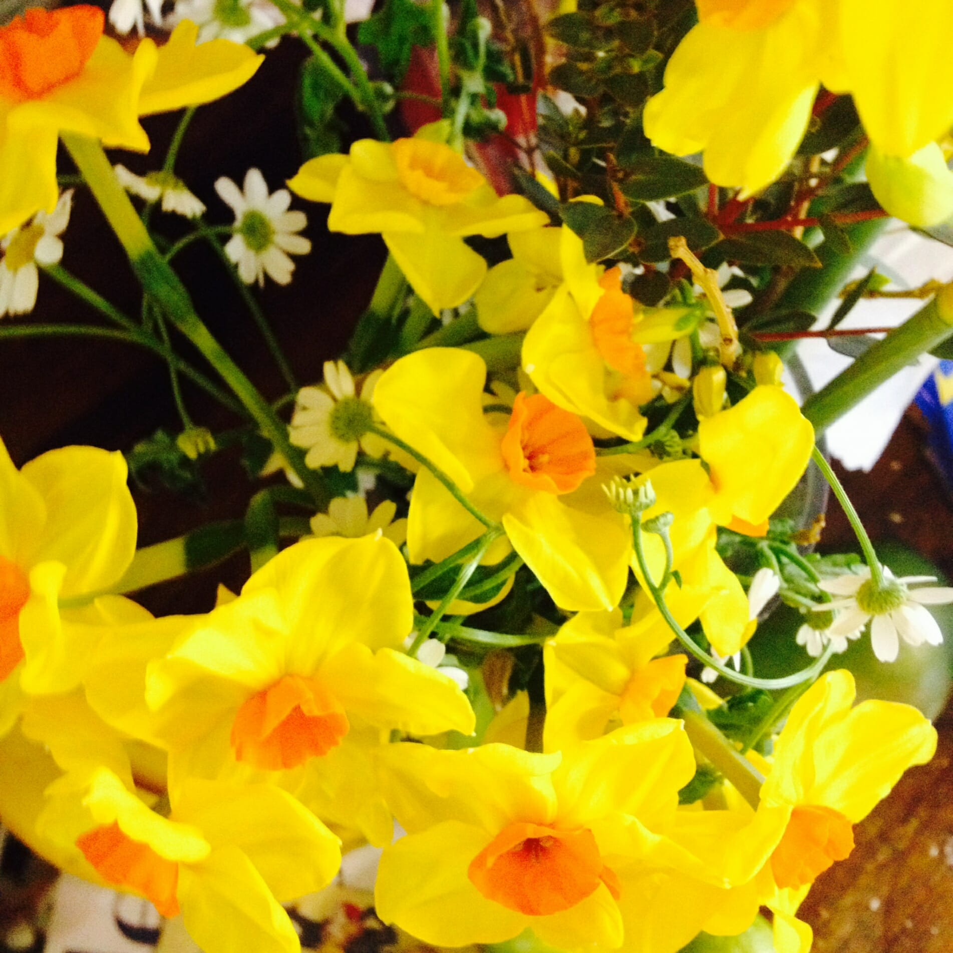 Lovely flowers from Annie Rose to the Zoots, Wiltshire, Hampshire & Dorset based band