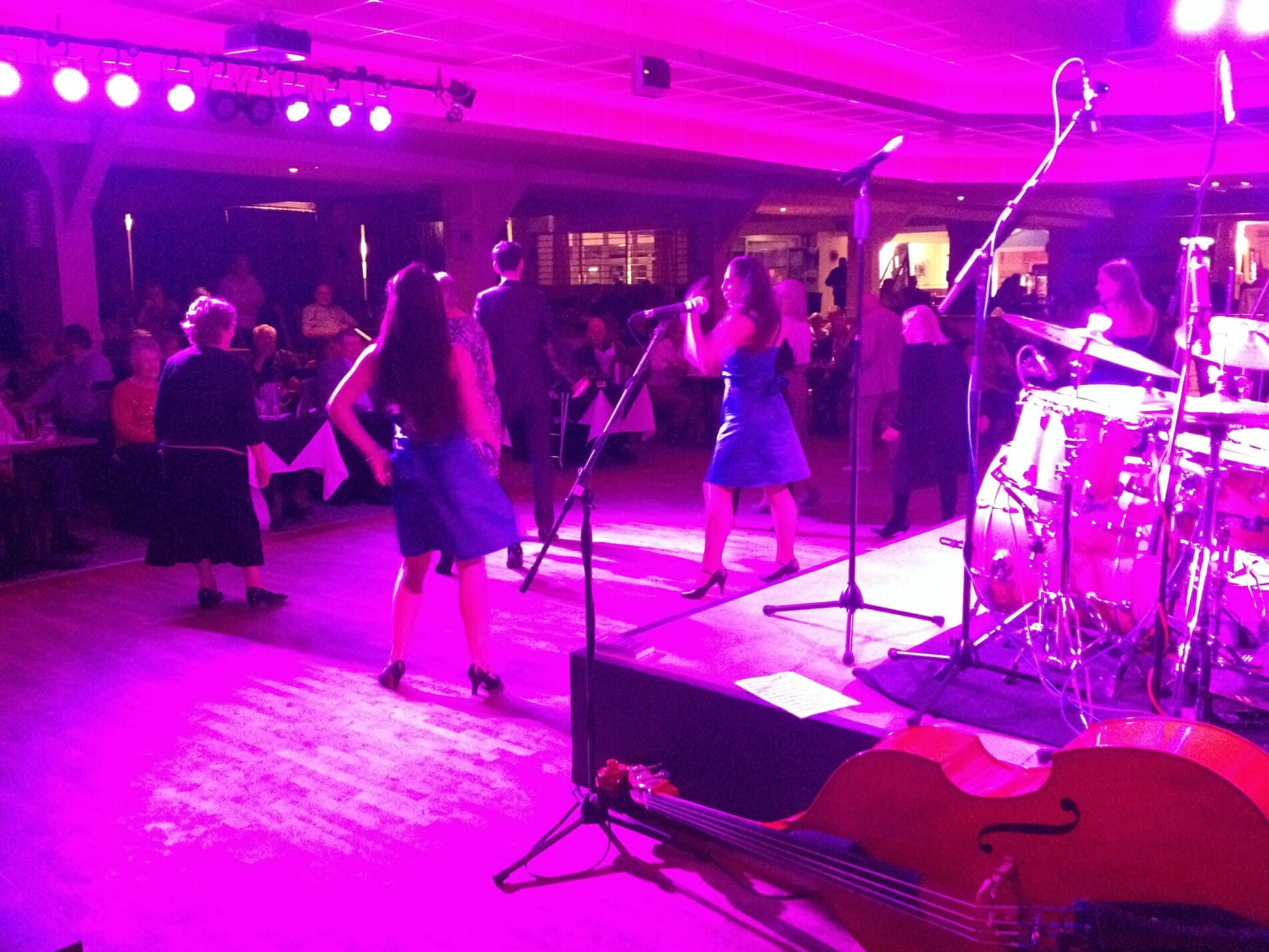 the zoots, 60s tribute band, sixties tribute band, 50s tribute band, band with double bass