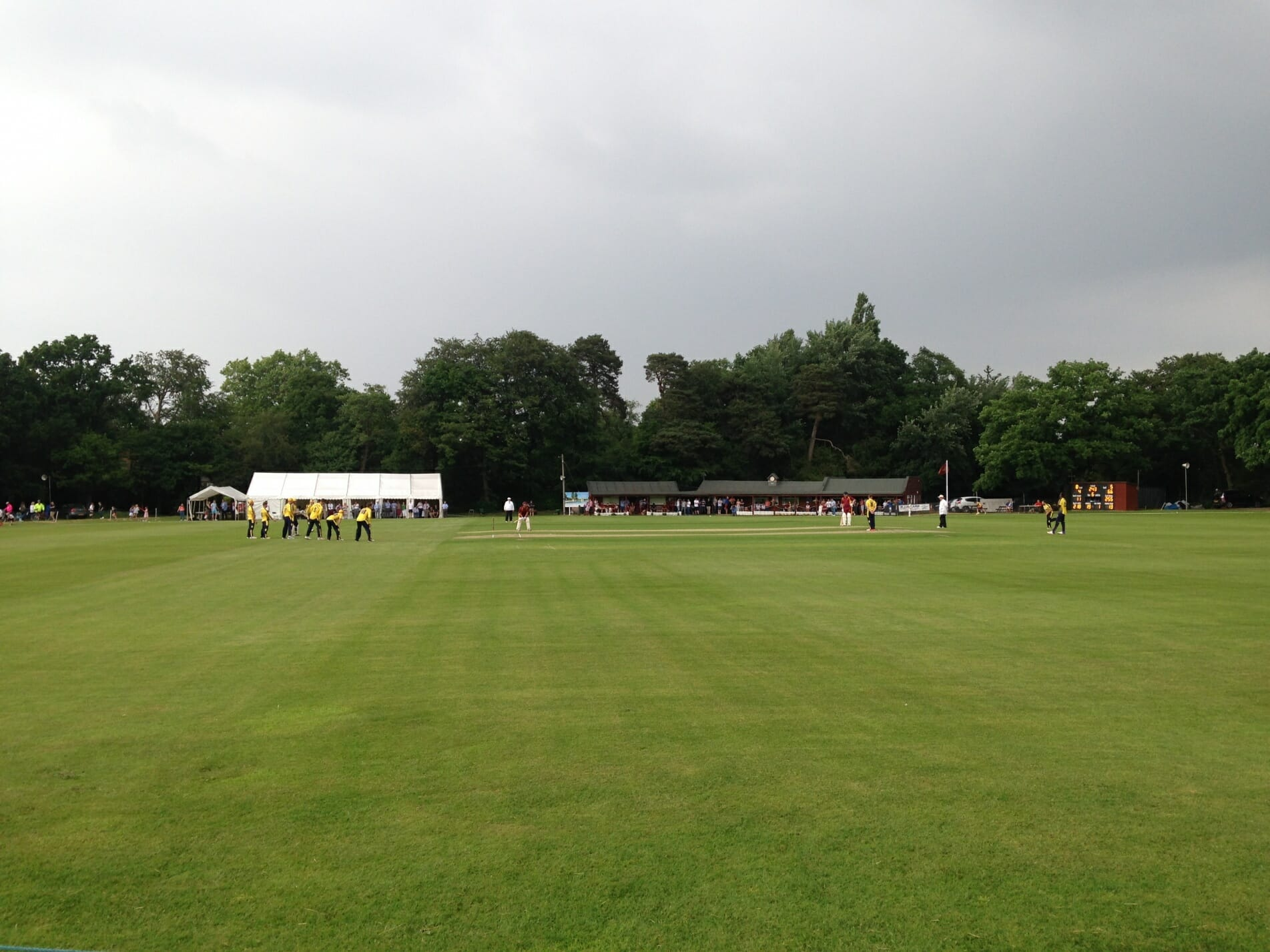frog and wicket, steve ervine testimonial match