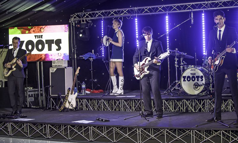 Zoots band, party band bray